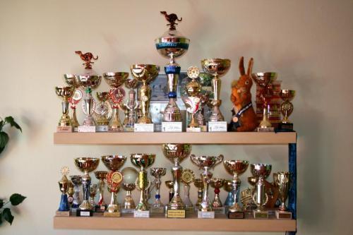 Poháry a trofeje 2014
